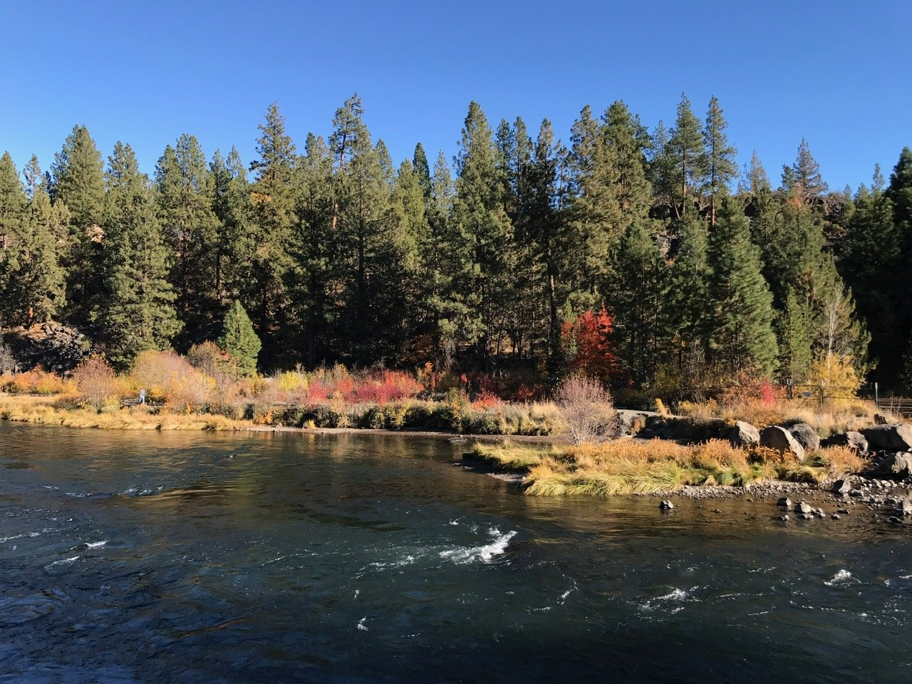 things-to-do-in-bend-oregon-deschutes-river-trail